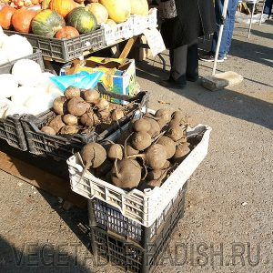 фото редьки на рынке