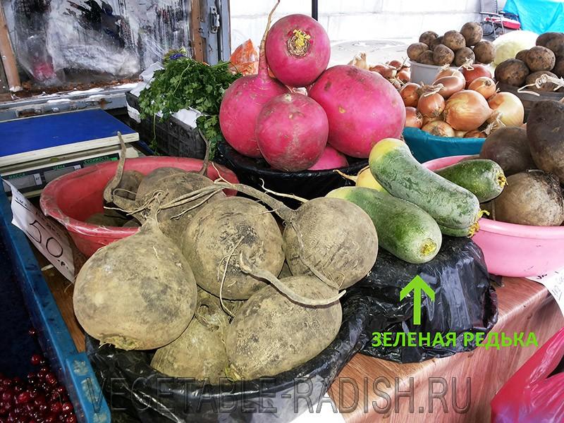 зеленая редька фото на рынке