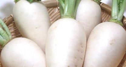 Белая редька — калорийность и состав