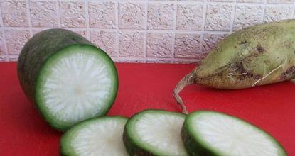 Сколько калорий в редьке зеленой?