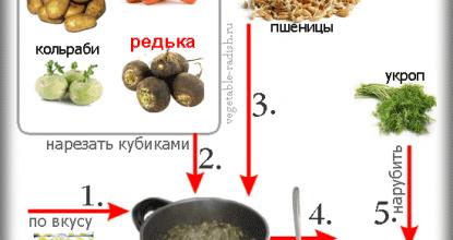 Суп из редьки и кольраби — наглядное схематическое пособие по приготовлению