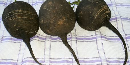 Питание редькой: рецепт салата «Архиерейский» с фото